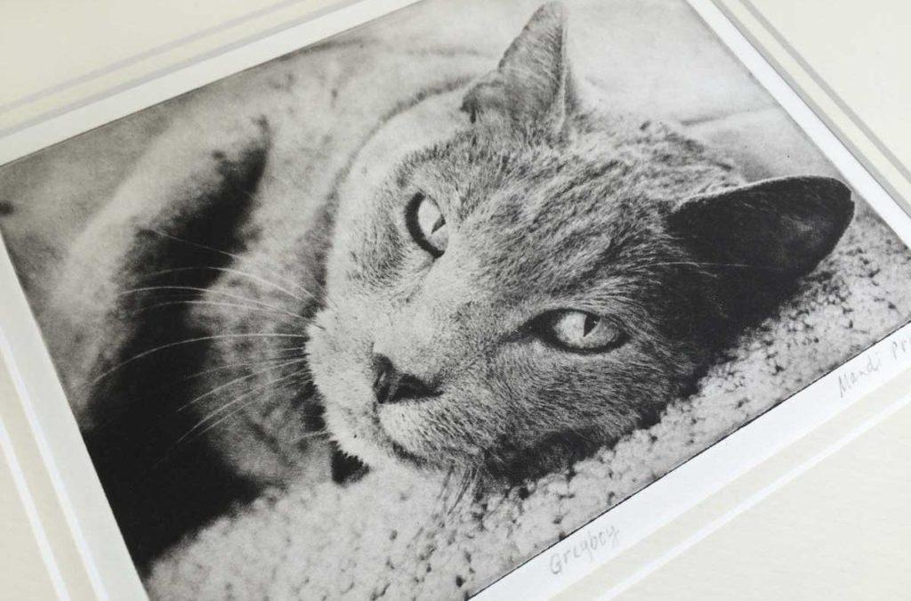 Pet Portrait with Ashes