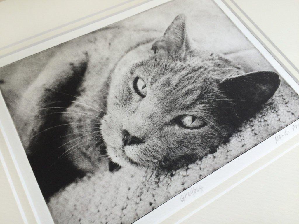 greyboy-pet-prints-etching
