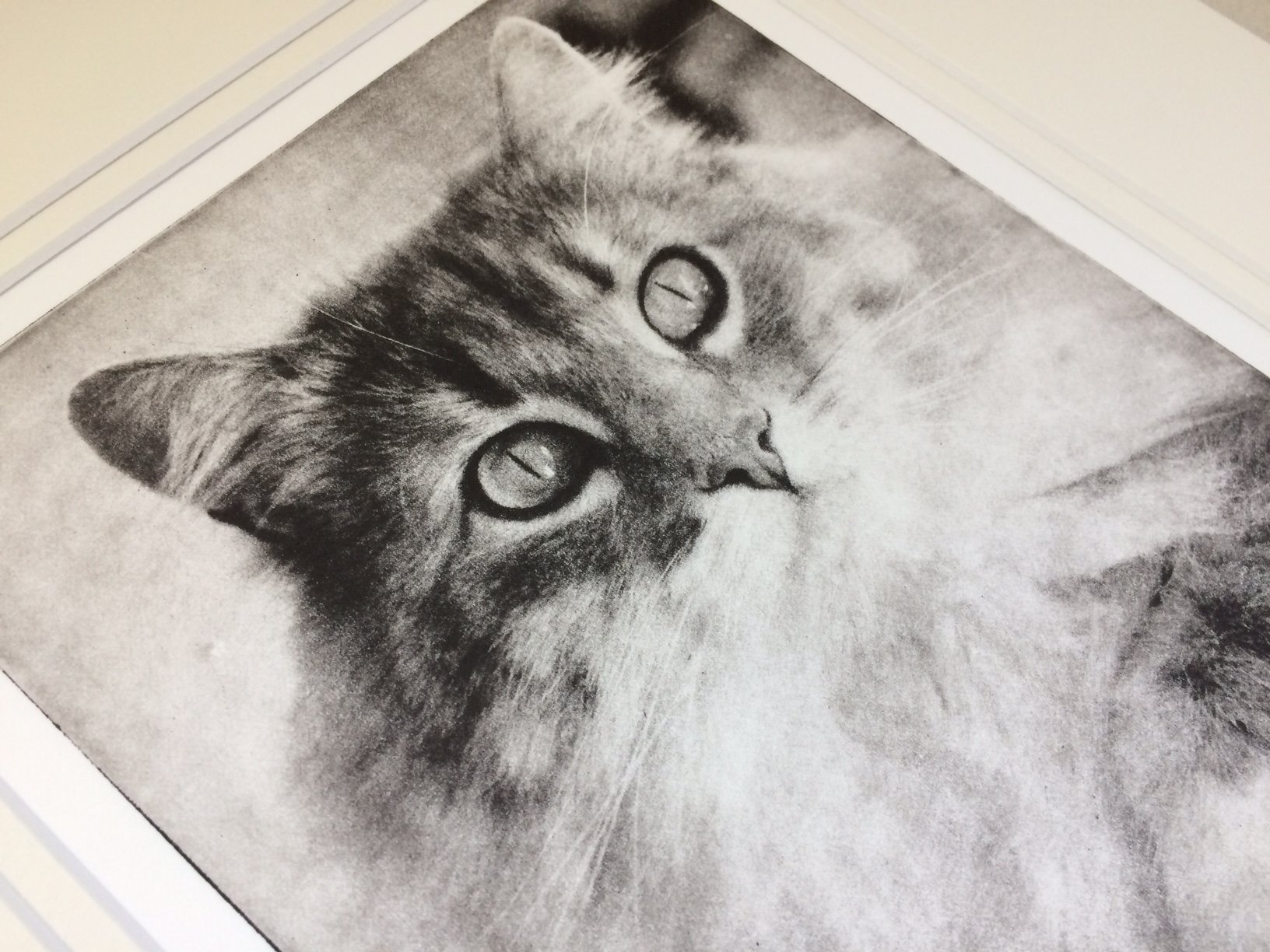 greyboypetprints-catportrait-detail-2