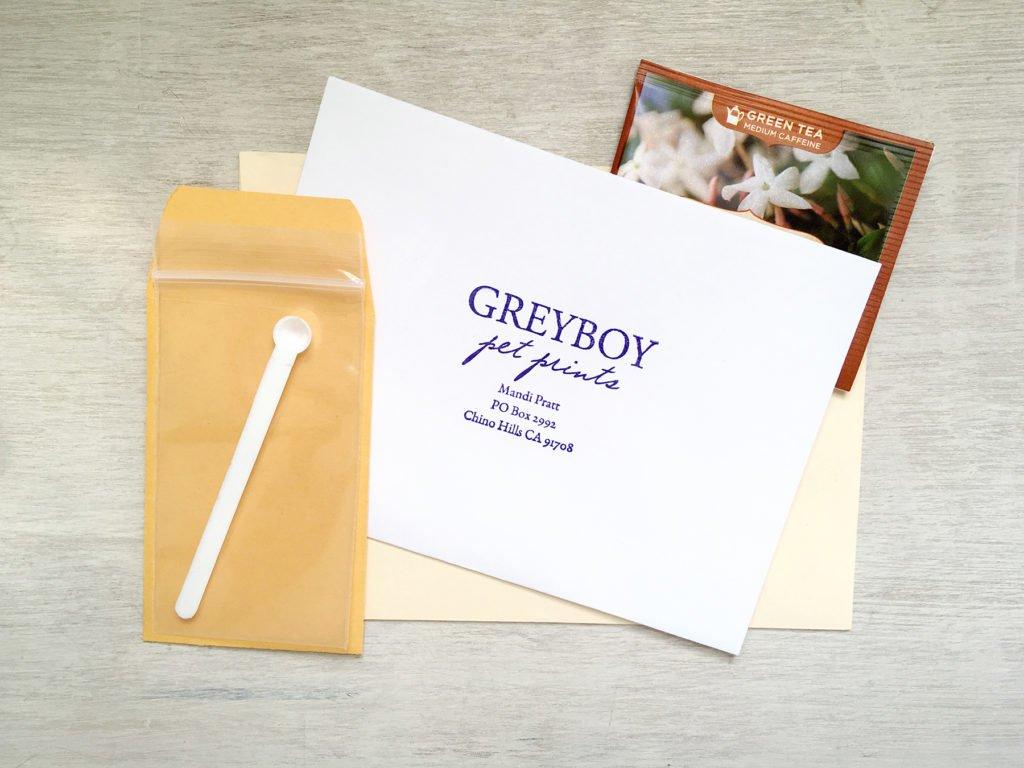 Ashes-Kit-Greyboy-Pet-Prints-w