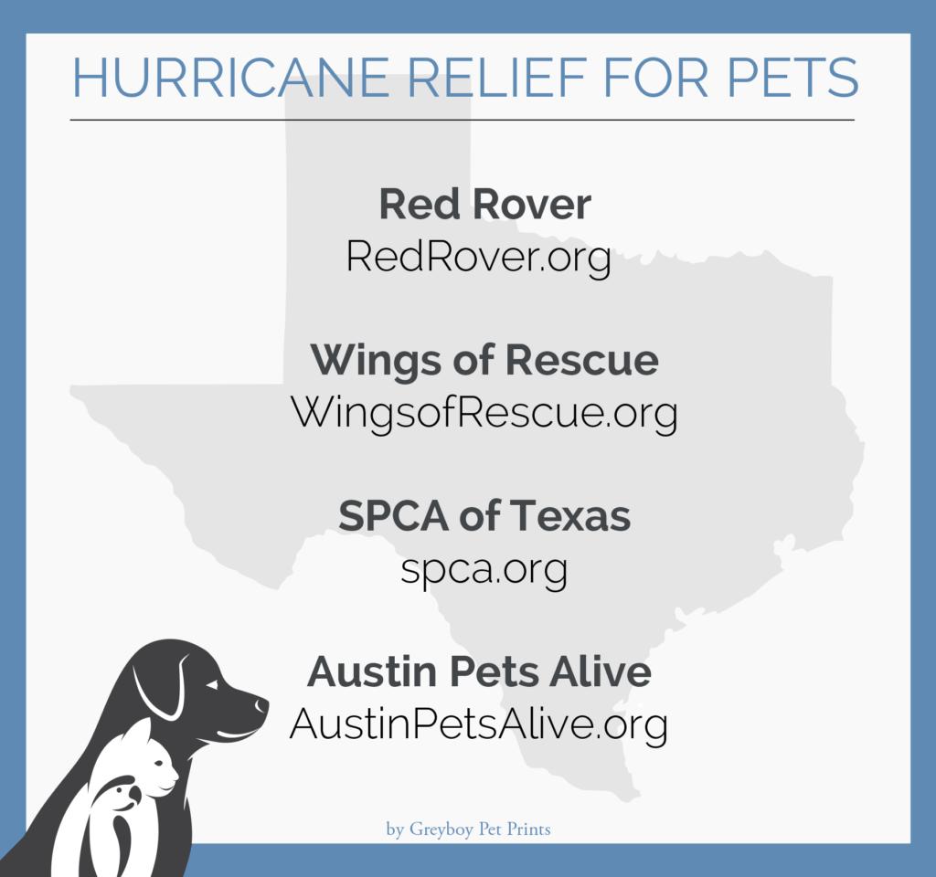 Hurricane-Relief-Texas-Pets