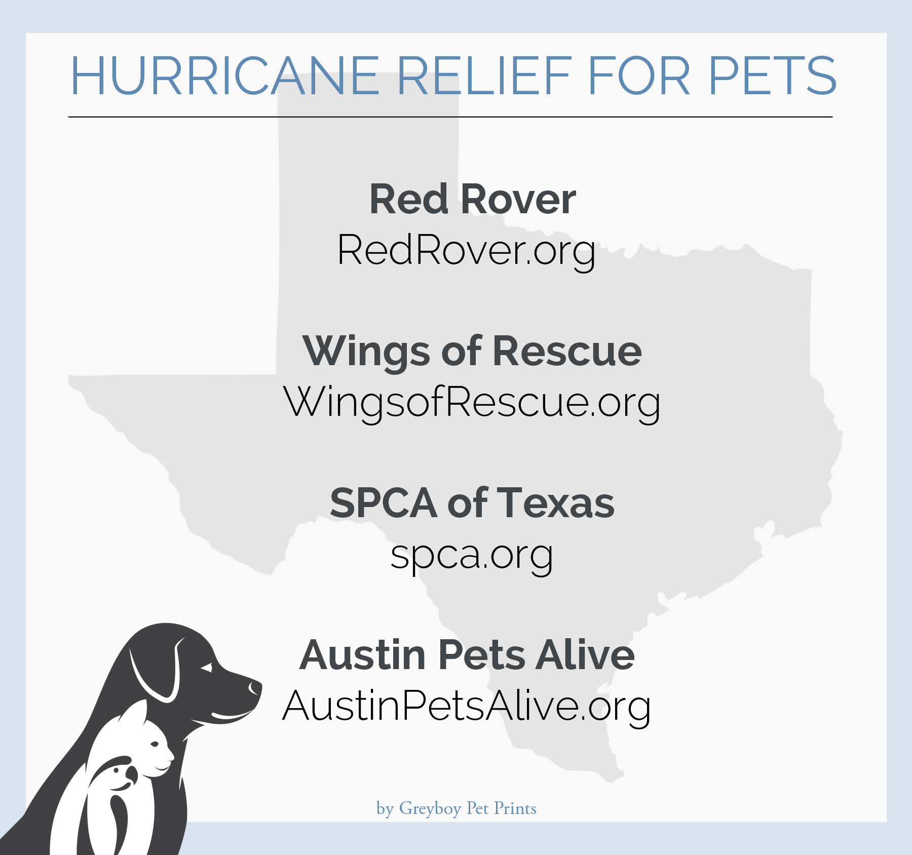 How To Help Pets Affected by Hurricane Harvey