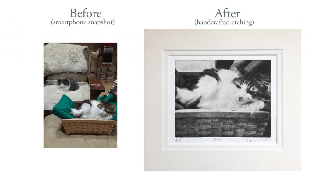 Original-Snapshot-After-Etching-Cat-in-Basket