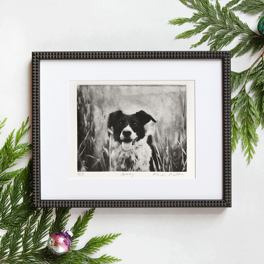 Holiday-Pet-Portrait-Gift