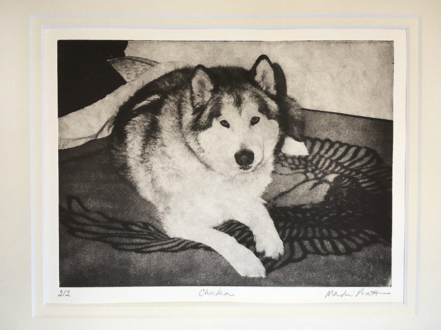 Greyboy_Pet-Print