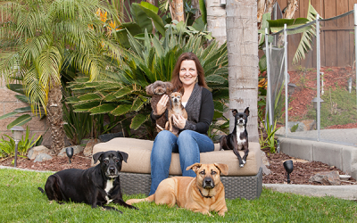 Pet Photography Session in Eastvale At Home