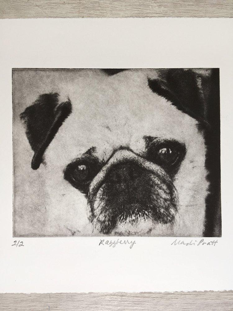 Pet-Portrait-Etching_Greyboy-Pet-Prints