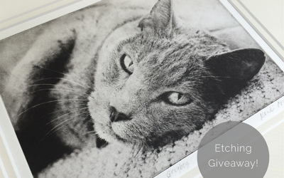 Win a Pet Portrait Etching