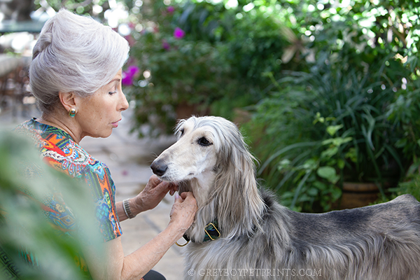Palm-Springs-Pet-Photography