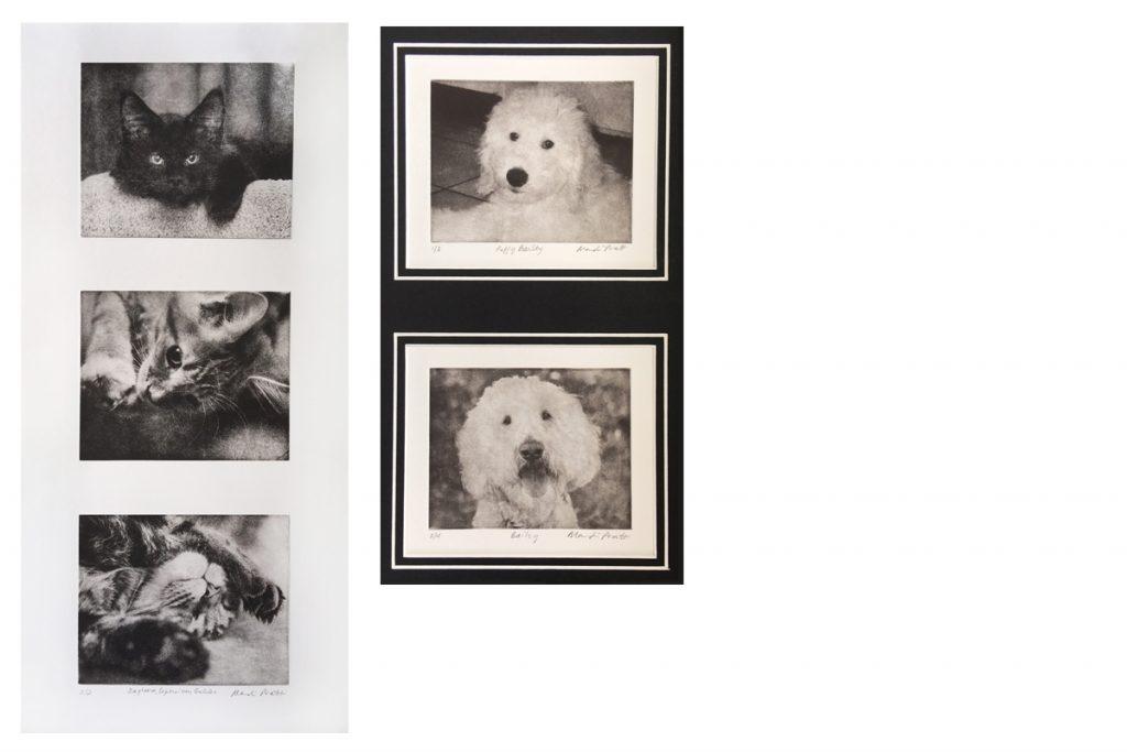 Custom-Pet-Art-Collage-Examples
