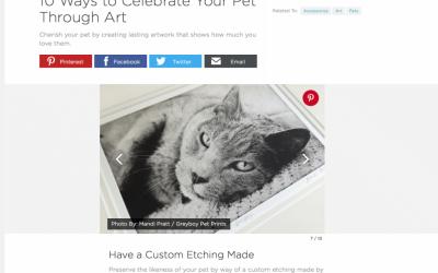 Custom Pet Art Featured in HGTV article