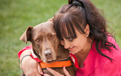 Dog Photography | Therapy Dog in Chino Hills