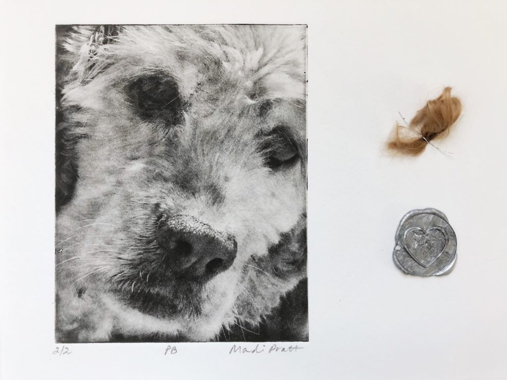 Dog-Art-With-Ashes
