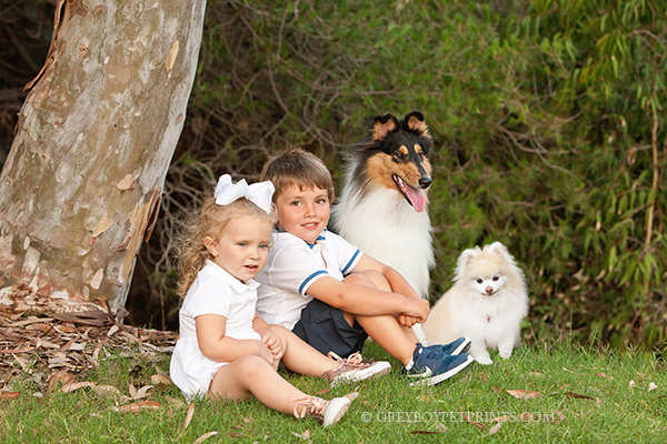 Grandkids-Dogs-Photographed-at-Home-Oc