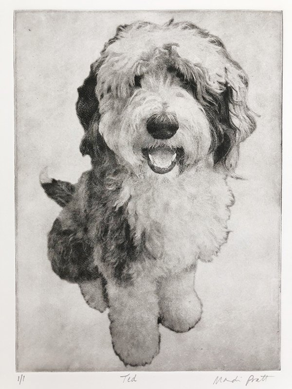 Custom Dog Portrait Etching of Ted the sheepdog