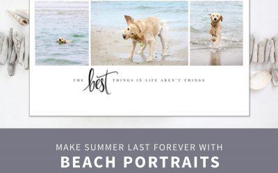Dog Beach Photos