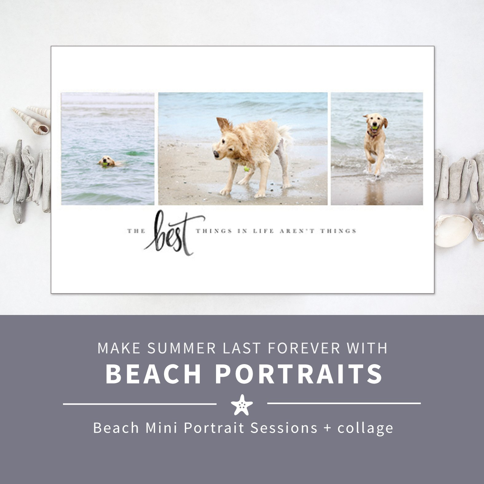 collage of dog beach photos