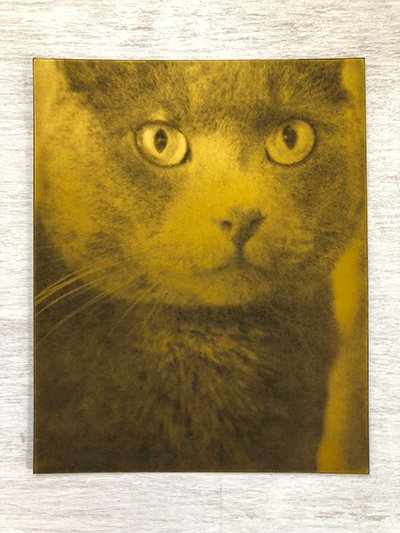 handmade-etched-plate-art-of-cat