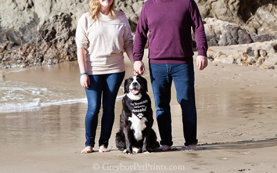 OC Beach Photos with Dog Announcing An Engagement!
